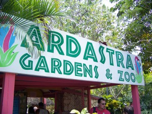 Excursions in Bahamas Nassau - Ardastra Zoo and Gardens