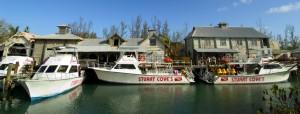 Stuart Coves - Nassau Bahamas Cruise Excursions